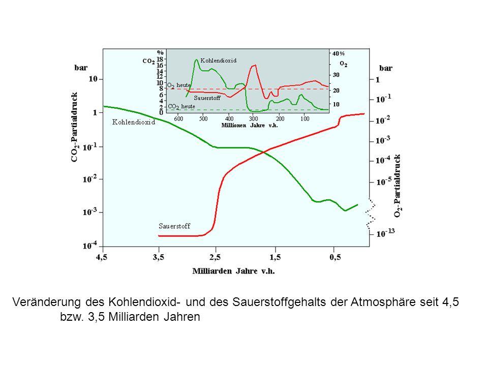 Veränderung des Kohlendioxid- und des Sauerstoffgehalts der Atmosphäre seit 4,5 bzw.