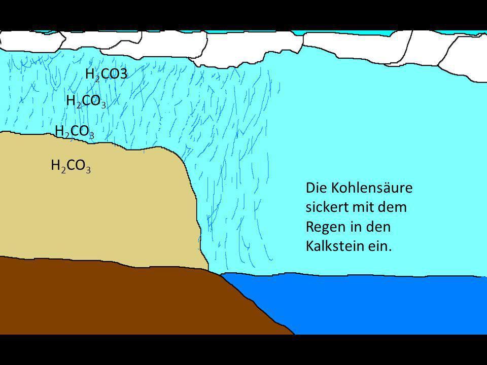 H2CO3 H2CO3 H2CO3 H2CO3 Die Kohlensäure sickert mit dem Regen in den Kalkstein ein.