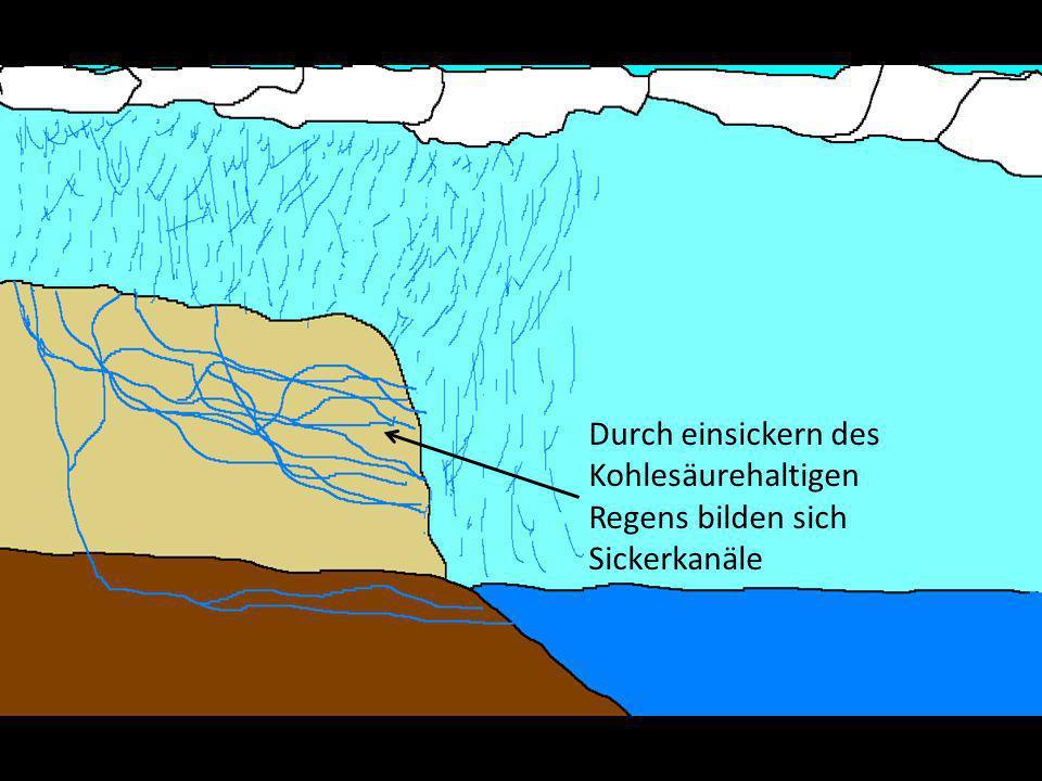 Durch einsickern des Kohlesäurehaltigen Regens bilden sich Sickerkanäle