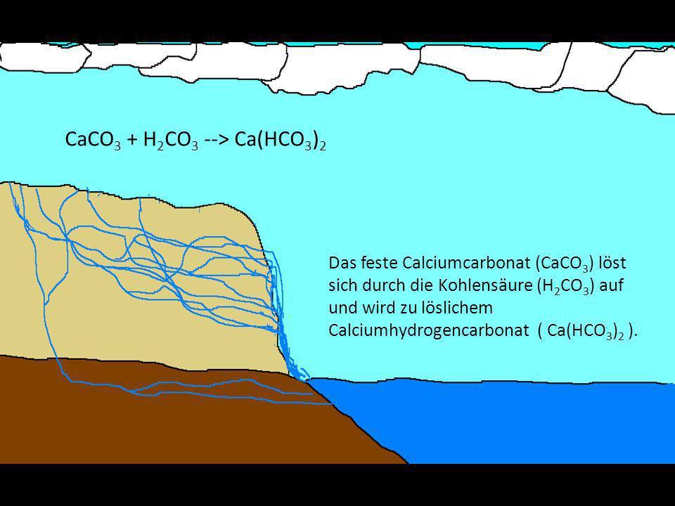 CaCO3 + H2CO3 --> Ca(HCO3)2