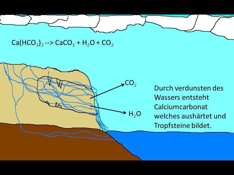 Ca(HCO3)2 --> CaCO3 + H2O + CO2