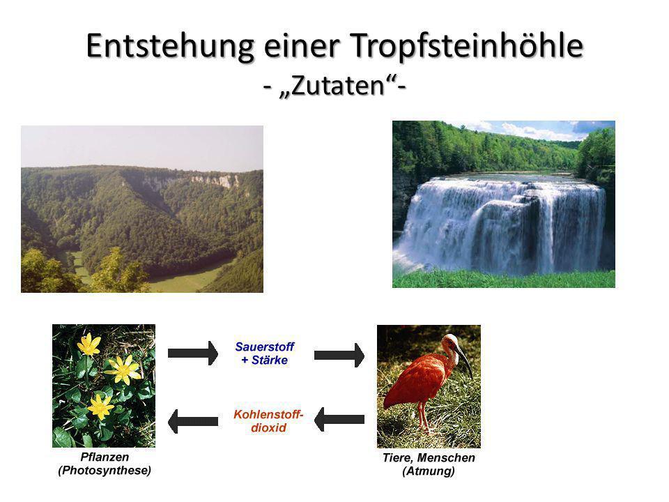 """Entstehung einer Tropfsteinhöhle - """"Zutaten -"""