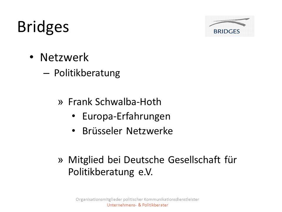 Bridges Netzwerk Politikberatung Frank Schwalba-Hoth