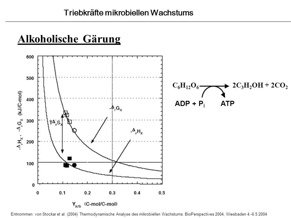 Alkoholische Gärung Triebkräfte mikrobiellen Wachstums