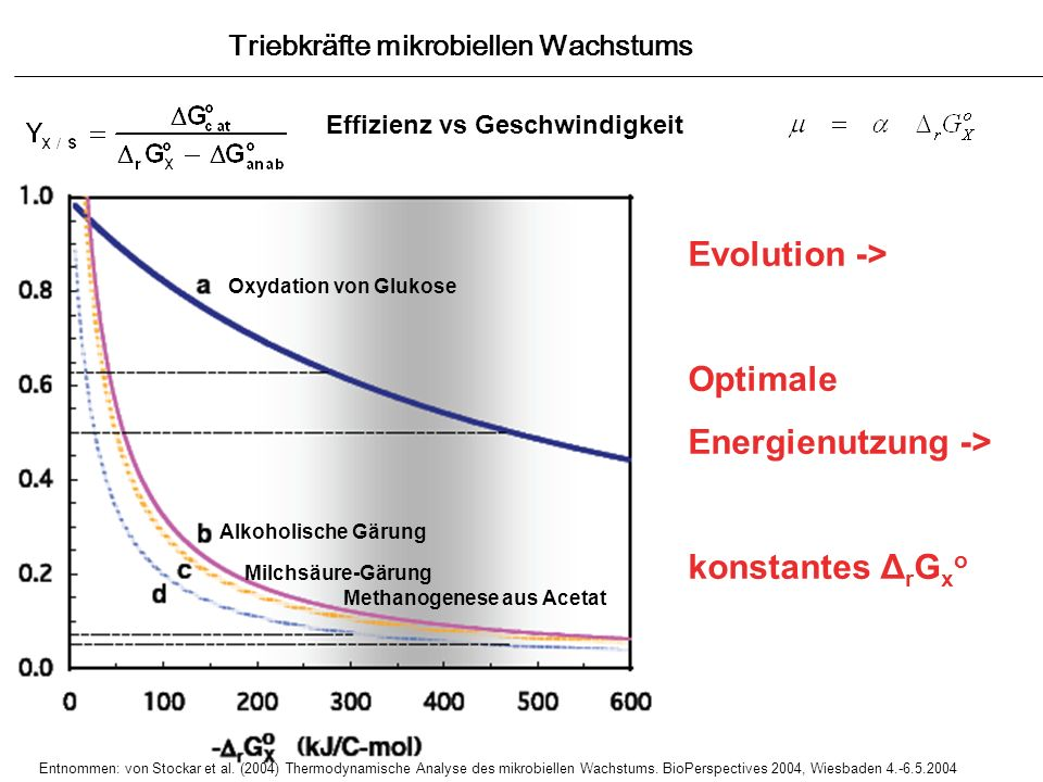 Evolution -> Optimale Energienutzung -> konstantes ΔrGxo