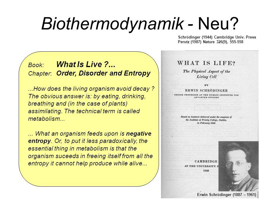 Biothermodynamik - Neu