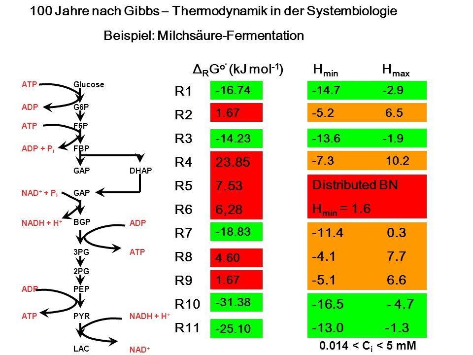 100 Jahre nach Gibbs – Thermodynamik in der Systembiologie
