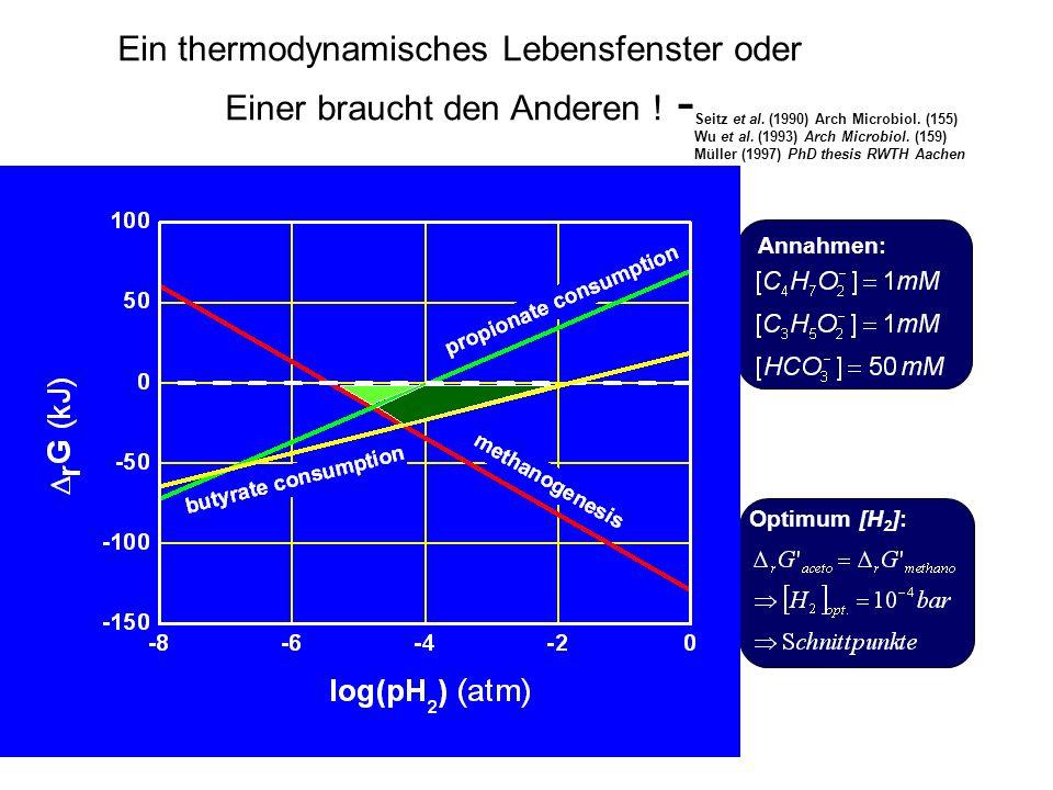 Ein thermodynamisches Lebensfenster oder Einer braucht den Anderen ! -