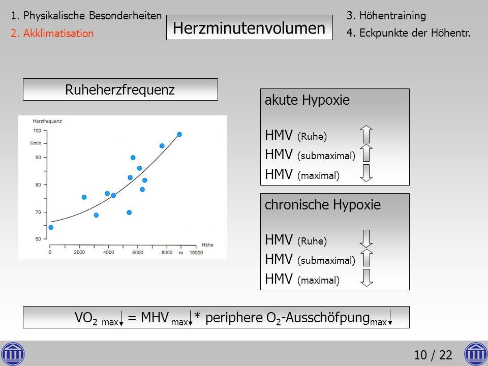 VO2 max = MHV max * periphere O2-Ausschöfpungmax