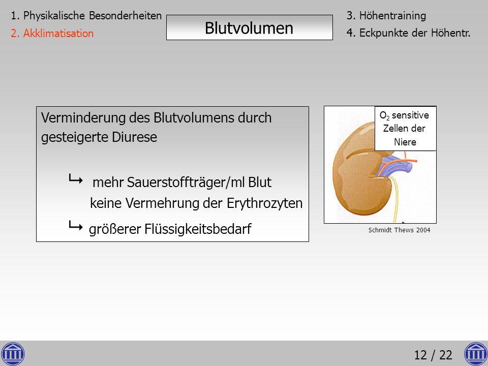 Blutvolumen Verminderung des Blutvolumens durch gesteigerte Diurese