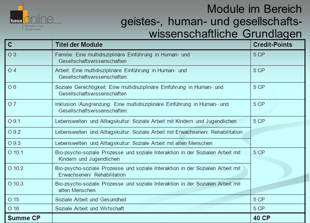 Module im Bereich geistes-, human- und gesellschafts- wissenschaftliche Grundlagen