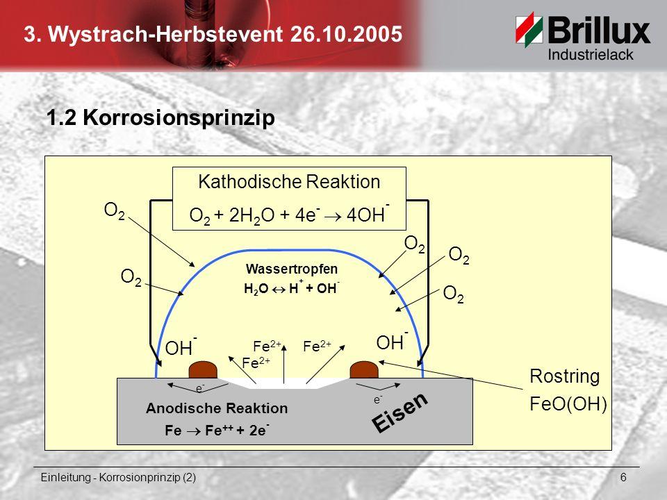 1.2 Korrosionsprinzip Eisen Kathodische Reaktion