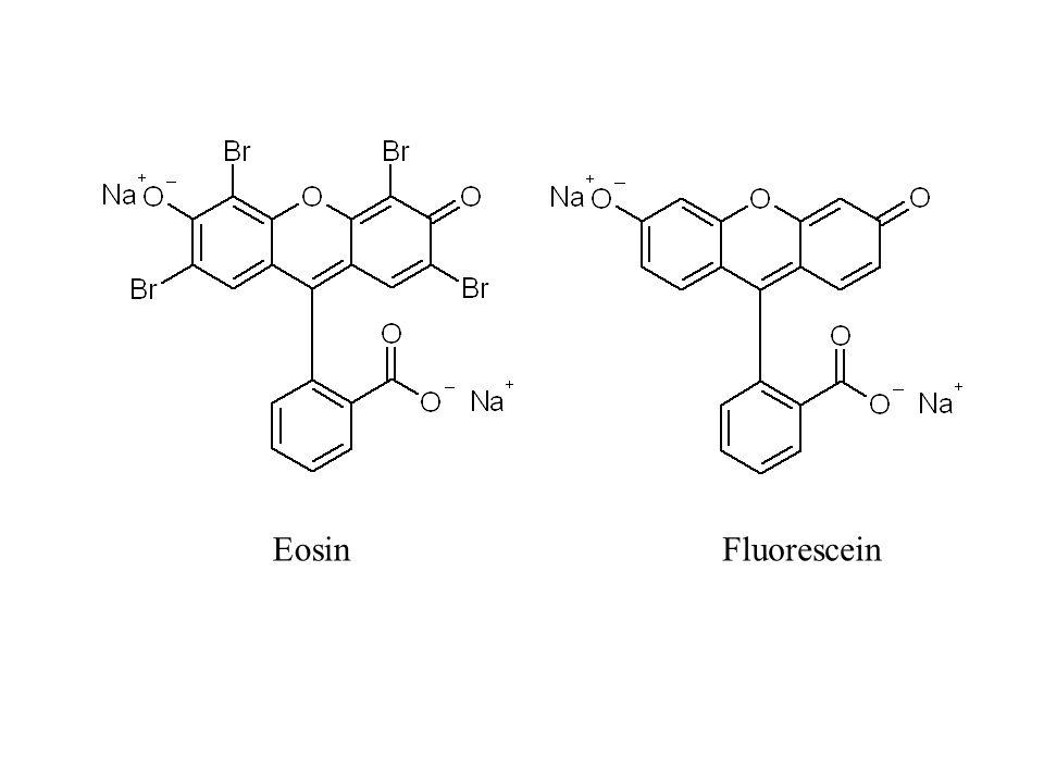 Eosin Fluorescein