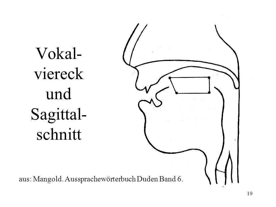 Vokal-viereck und Sagittal-schnitt