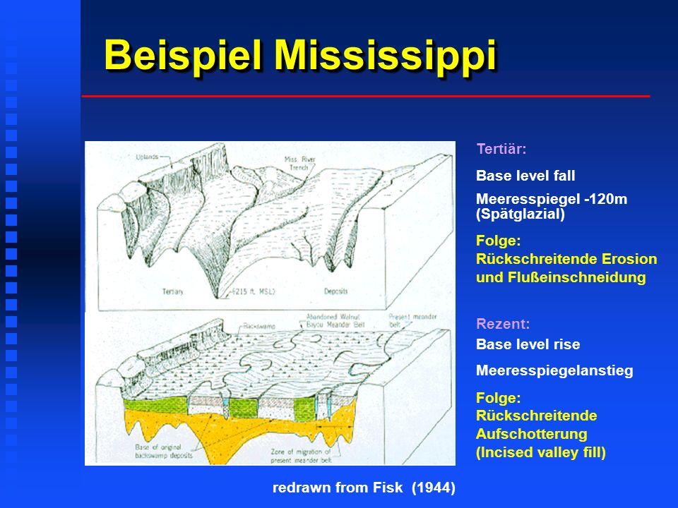 Beispiel Mississippi Tertiär: Base level fall