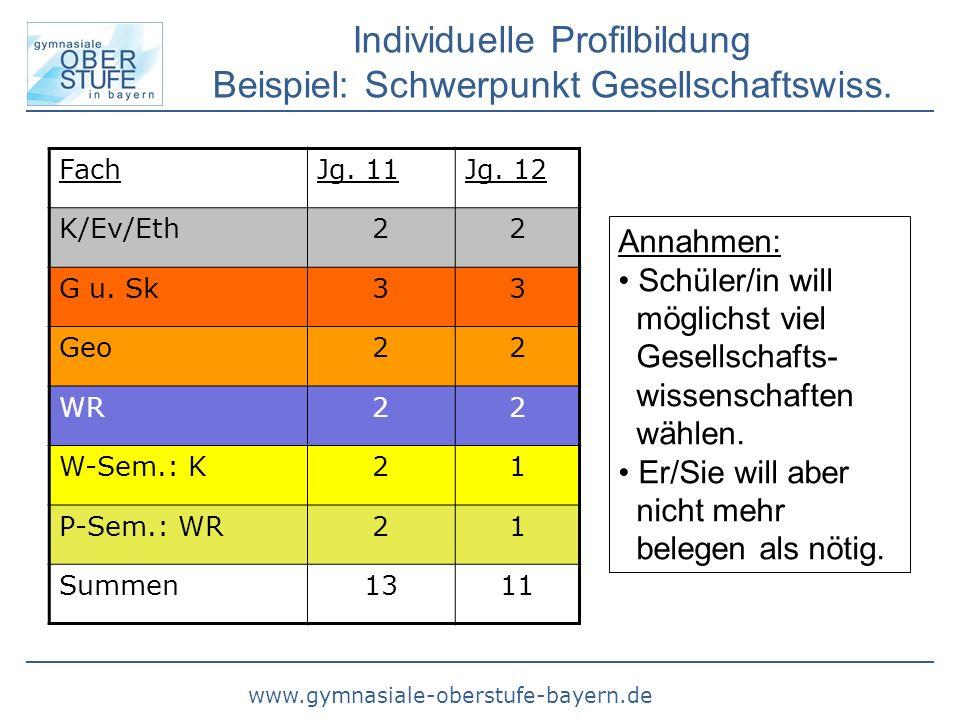 Individuelle Profilbildung Beispiel: Schwerpunkt Gesellschaftswiss.