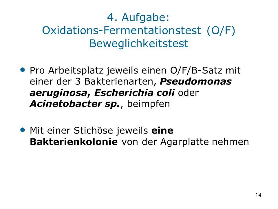 4. Aufgabe: Oxidations-Fermentationstest (O/F) Beweglichkeitstest