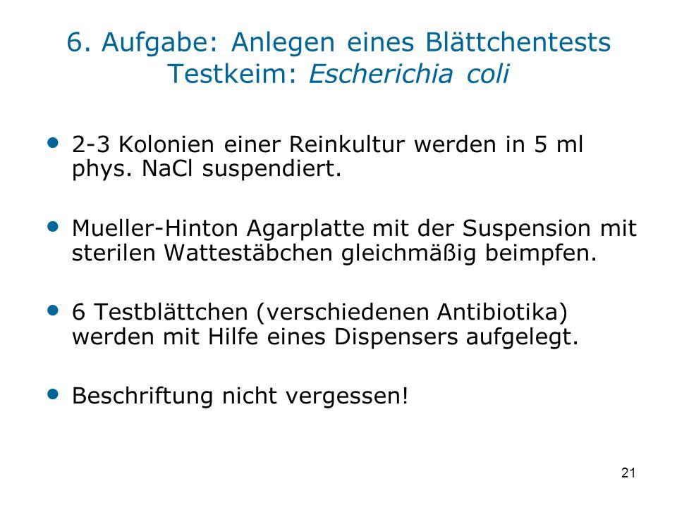 6. Aufgabe: Anlegen eines Blättchentests Testkeim: Escherichia coli