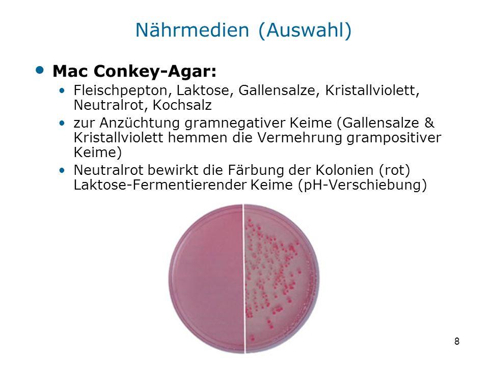Nährmedien (Auswahl) Mac Conkey-Agar: