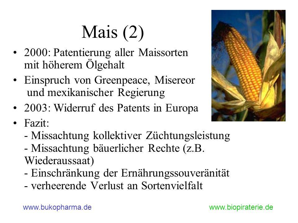 Mais (2) 2000: Patentierung aller Maissorten mit höherem Ölgehalt