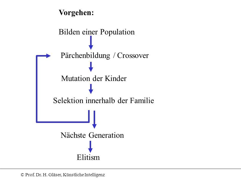 Vorgehen: Bilden einer Population. Pärchenbildung / Crossover. Mutation der Kinder. Selektion innerhalb der Familie.