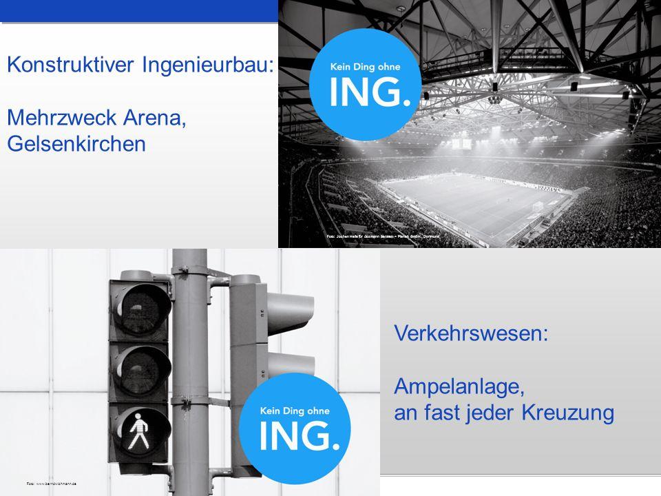 Konstruktiver Ingenieurbau: Mehrzweck Arena, Gelsenkirchen