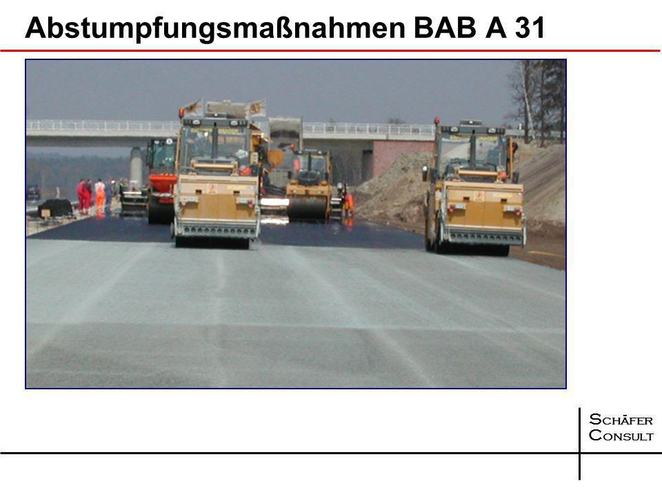 Abstumpfungsmaßnahmen BAB A 31