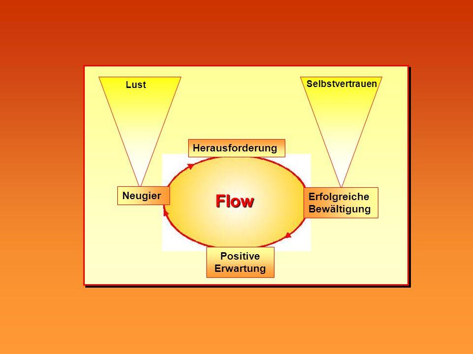 Flow Herausforderung Neugier Erfolgreiche Bewältigung