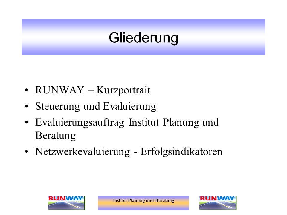 Institut Planung und Beratung