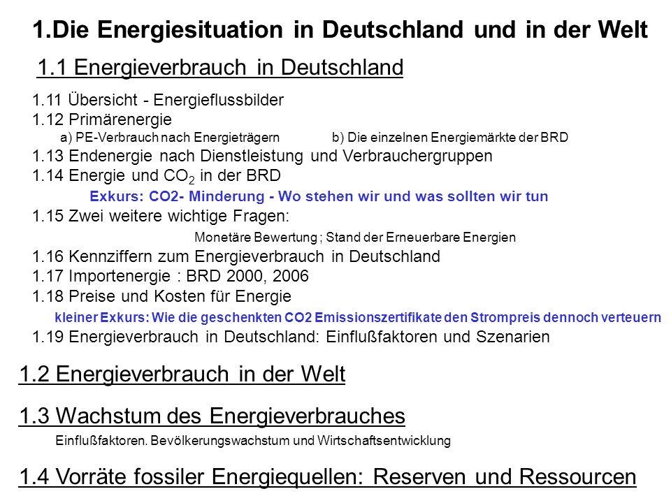 Die Energiesituation in Deutschland und in der Welt 1