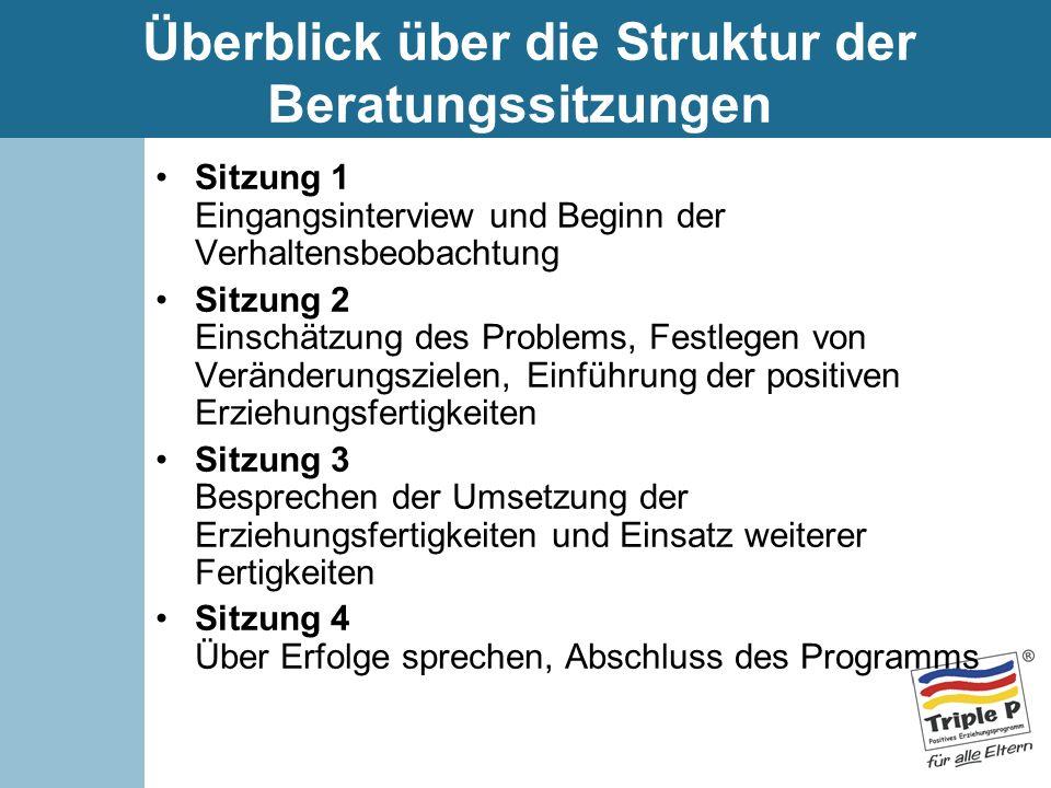 Überblick über die Struktur der Beratungssitzungen