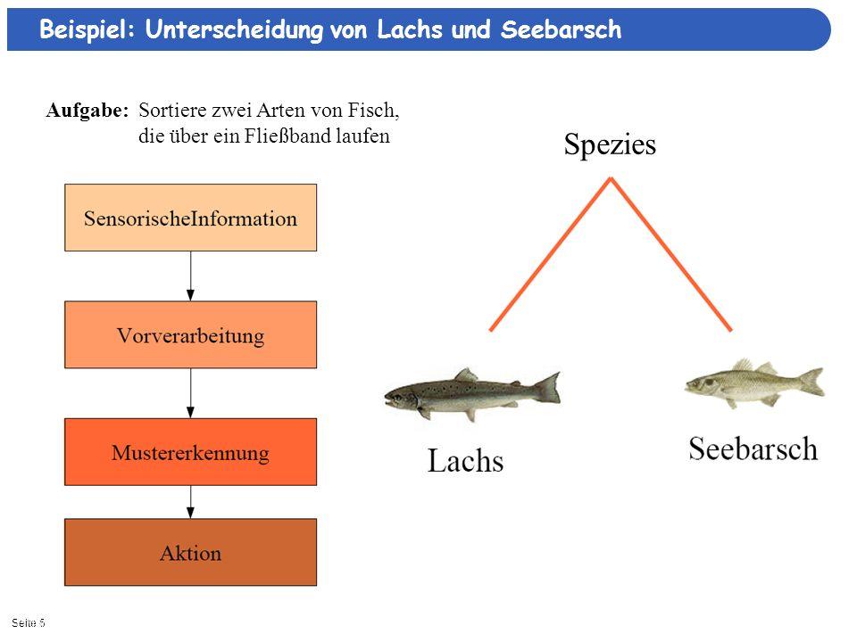 Spezies Beispiel: Unterscheidung von Lachs und Seebarsch