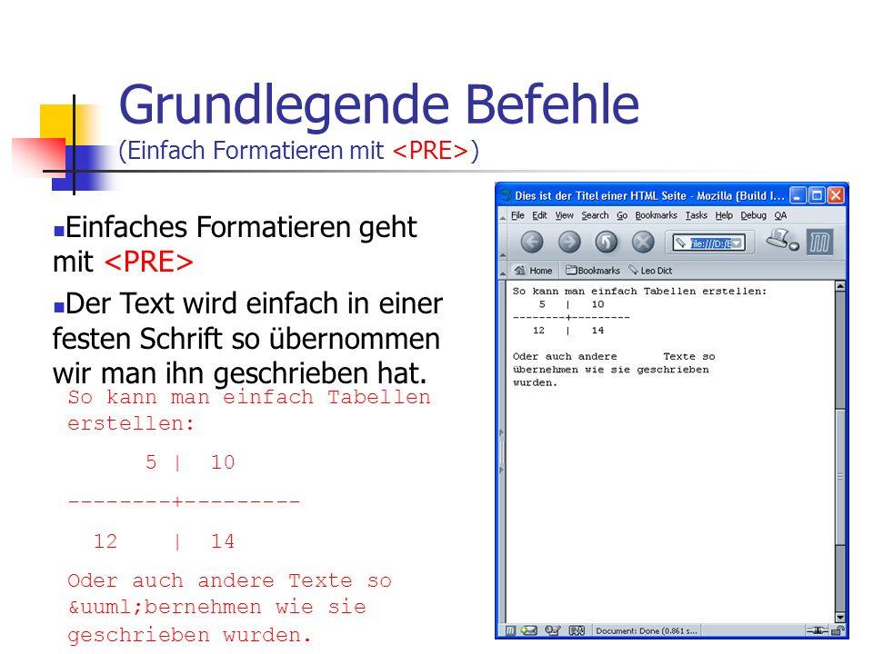 Grundlegende Befehle (Einfach Formatieren mit <PRE>)
