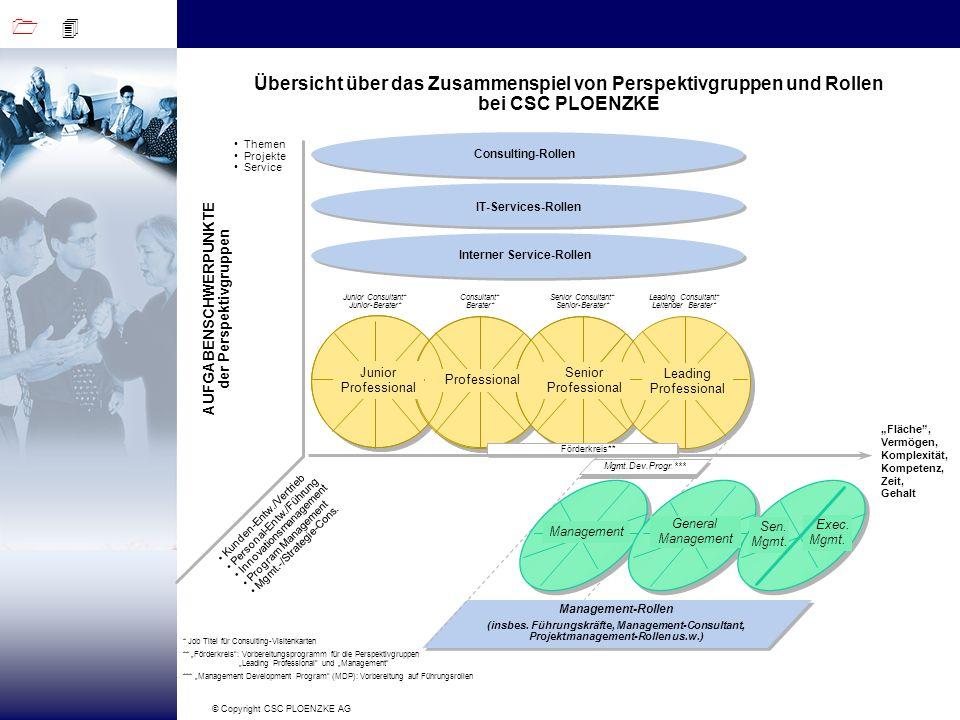 Interner Service-Rollen AUFGABENSCHWERPUNKTE der Perspektivgruppen