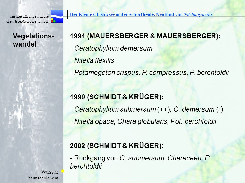 1994 (MAUERSBERGER & MAUERSBERGER): Ceratophyllum demersum