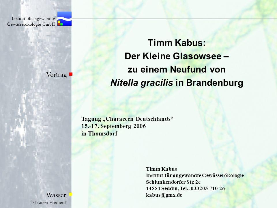Timm Kabus: Der Kleine Glasowsee – zu einem Neufund von Nitella gracilis in Brandenburg