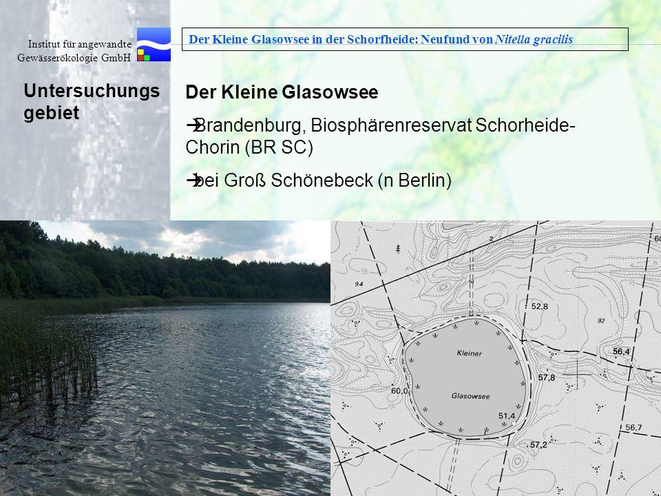 Brandenburg, Biosphärenreservat Schorheide-Chorin (BR SC)