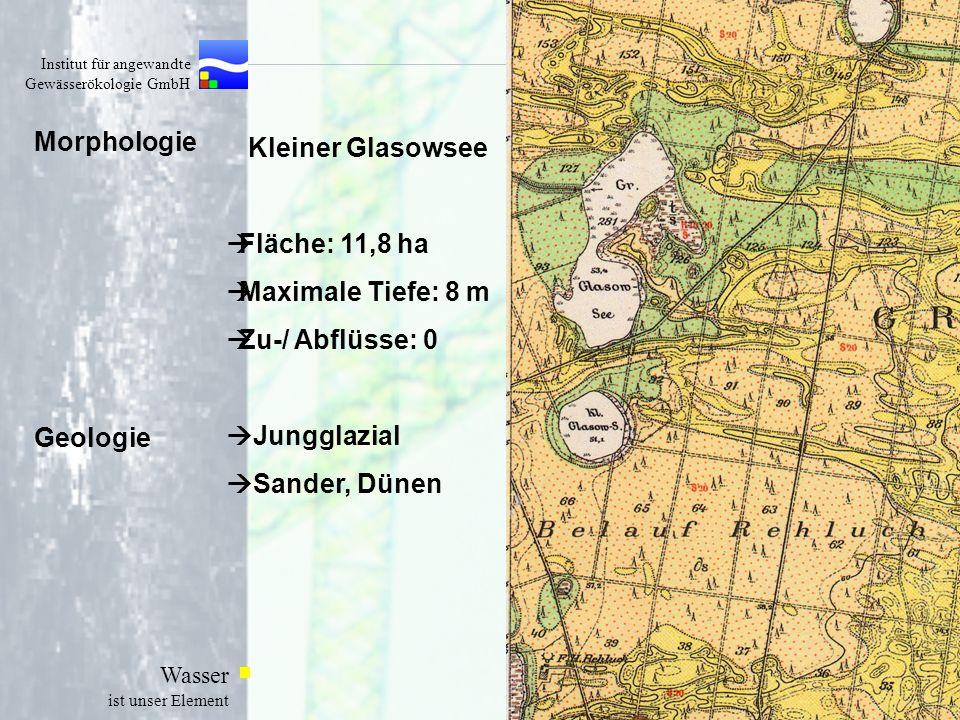 Morphologie Kleiner Glasowsee Fläche: 11,8 ha Maximale Tiefe: 8 m