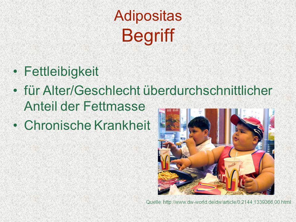 Adipositas Begriff Fettleibigkeit