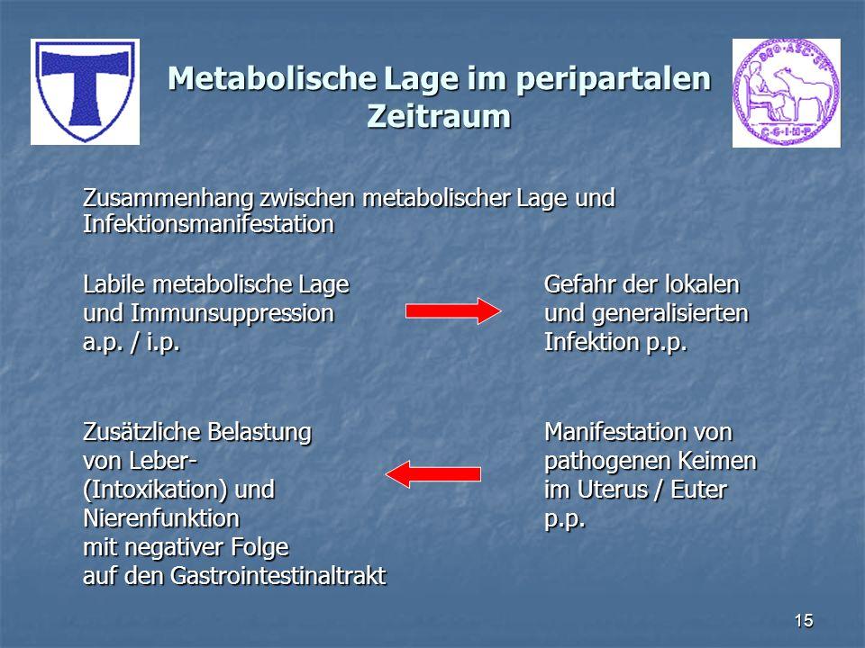 Metabolische Lage im peripartalen Zeitraum