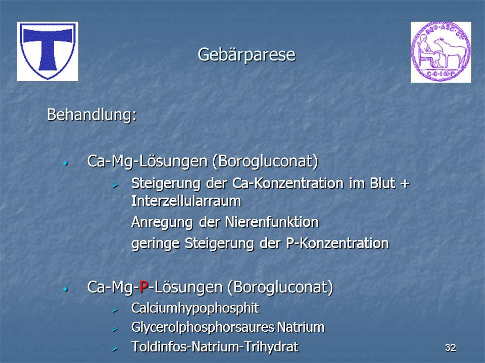 Gebärparese Behandlung: Ca-Mg-Lösungen (Borogluconat)