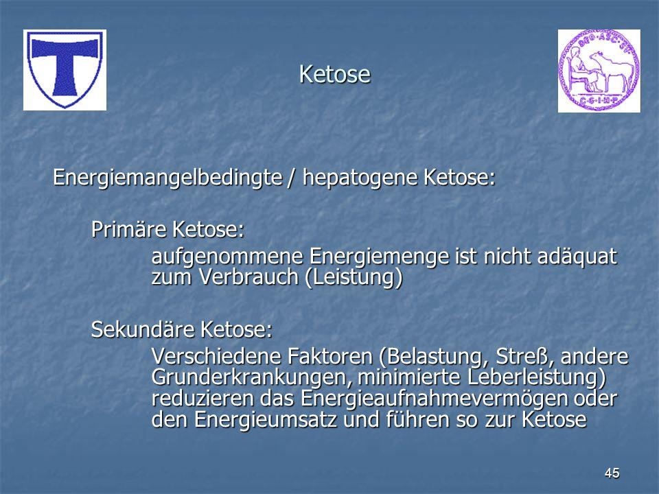 Ketose Energiemangelbedingte / hepatogene Ketose: Primäre Ketose: