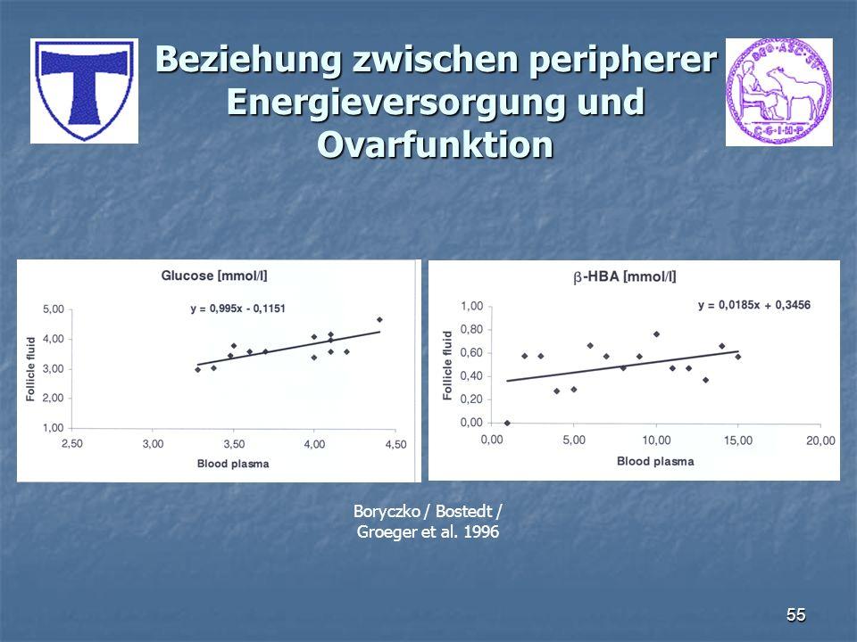 Beziehung zwischen peripherer Energieversorgung und Ovarfunktion