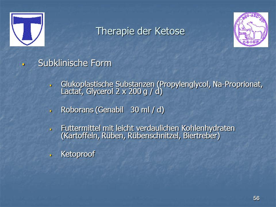 Therapie der Ketose Subklinische Form