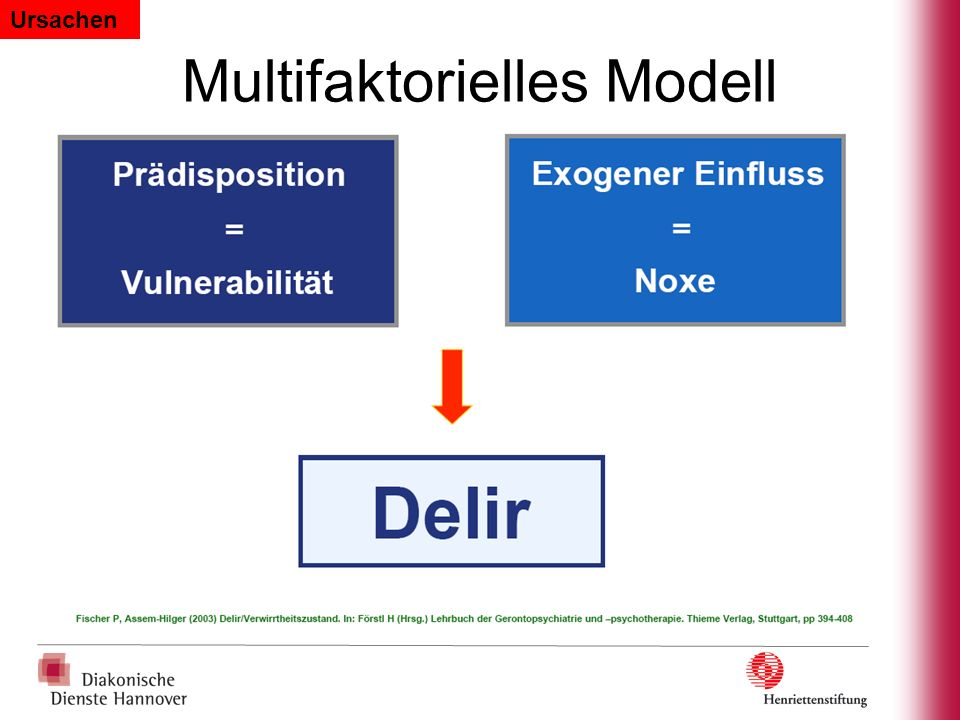 Multifaktorielles Modell