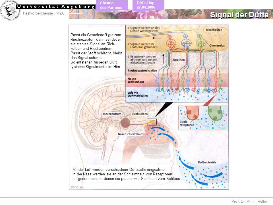 Signal der Düfte Passt ein Geruchstoff gut zum