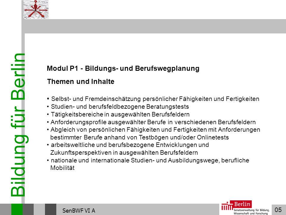 Bildung für Berlin Modul P1 - Bildungs- und Berufswegplanung