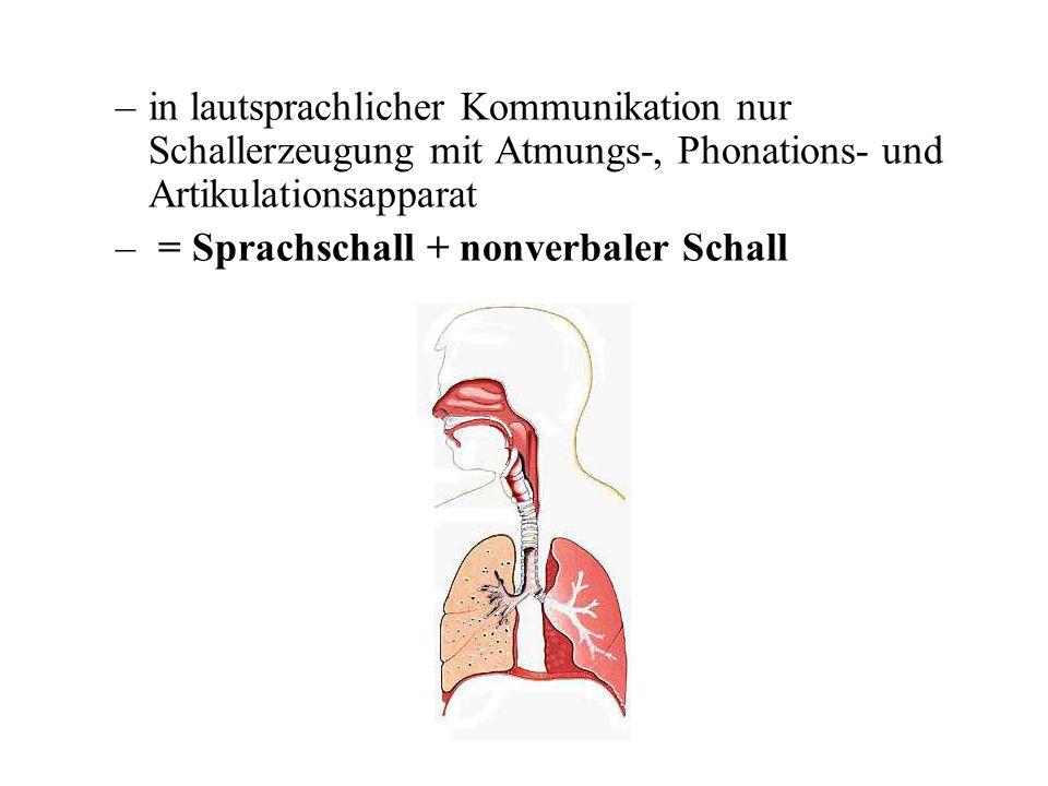 in lautsprachlicher Kommunikation nur Schallerzeugung mit Atmungs-, Phonations- und Artikulationsapparat