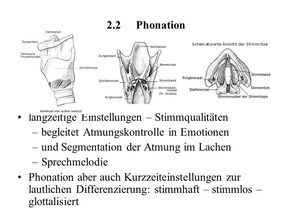 2.2 Phonation langzeitige Einstellungen – Stimmqualitäten. begleitet Atmungskontrolle in Emotionen.