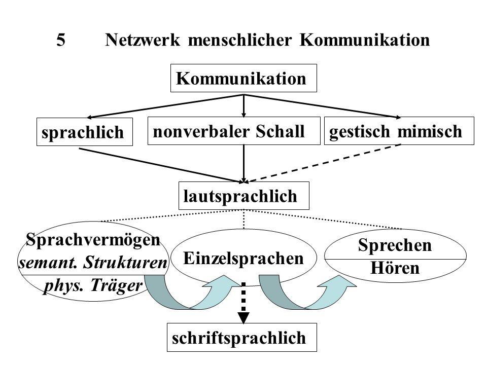 5 Netzwerk menschlicher Kommunikation